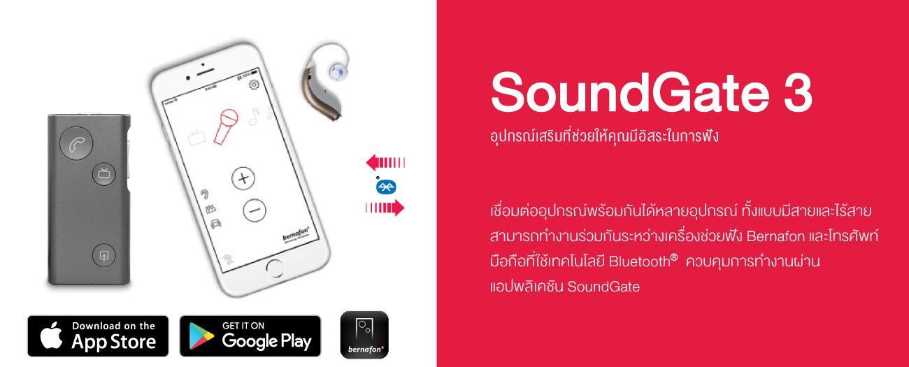 Accessorie_SoundGate3