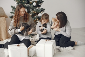 Family and little cats
